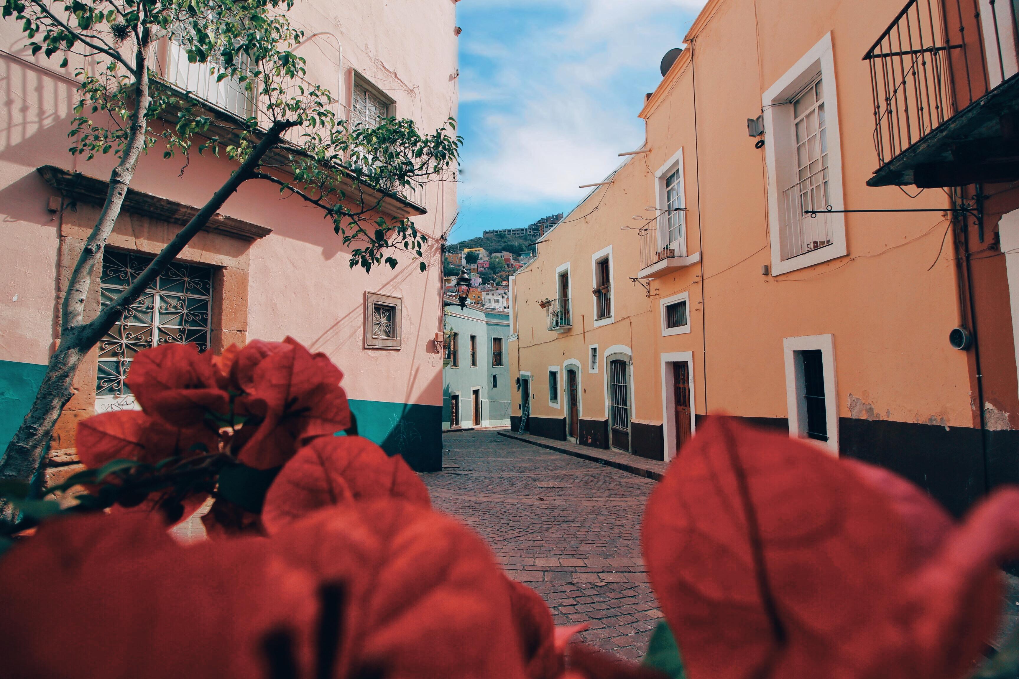 El abecedario de los callejones en Guanajuato capital, un recorrido de la A a la Z 🌈 ❤️