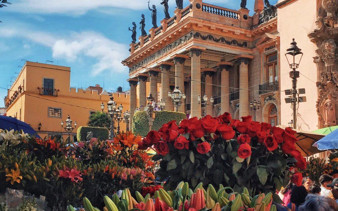 Este 2021 sí podría celebrarse el Día de las Flores en Guanajuato capital 🌼 🌺
